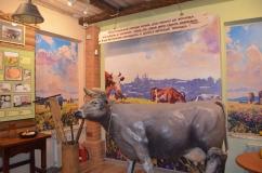 музей сыра 2.JPG