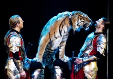 цирк 3.jpg