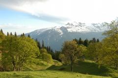 Абхазия 6