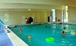 Мюссера бассейн 1
